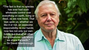 Sir Attenborough Tells it Like it Is