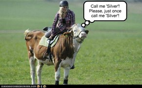 Call me 'Silver'!  Please, just once call me 'Silver'!
