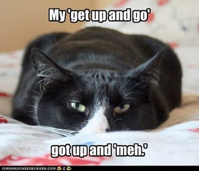 Get up and Meh.