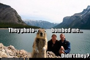 They photo-              bombed me... Didn't they?