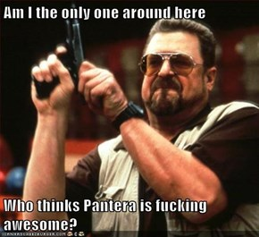 Am I the only one around here  Who thinks Pantera is fucking awesome?