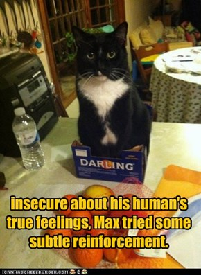 insecure about his human's true feelings, Max tried some subtle reinforcement.