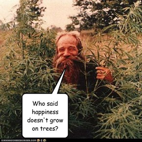 Who said happiness doesn't grow on trees?