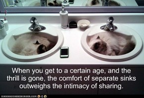 When you get to a certain age, and the thrill is gone, the comfort of separate sinks outweighs the intimacy of sharing.