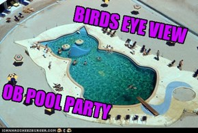 BIRDS EYE VIEW OB POOL PARTY