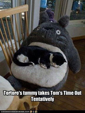 Tortoro's tummy takes Tom's Time Out Tentatively