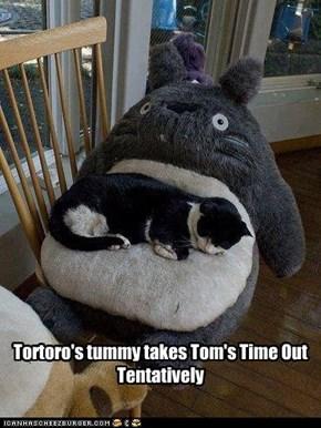 Tortoro's tummy takes Tom's Time Out Tentatively