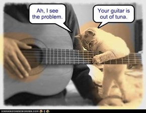 If it has strings, kitty can fix it