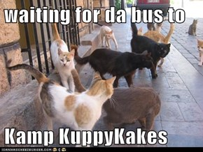 waiting for da bus to  Kamp KuppyKakes