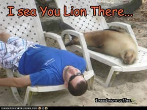 I sea You Lion There...