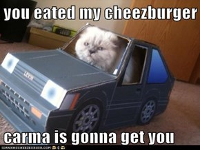 you eated my cheezburger  carma is gonna get you
