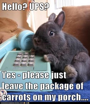 Hello? UPS?  Yes - please just leave the package of carrots on my porch....