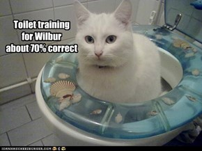 Toilet training  for Wilbur about 70% correct