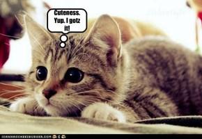Cuteness. Yup. I gotz it!