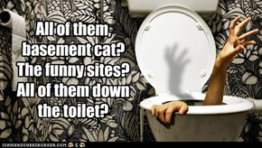 All of them, basement cat? The funny sites? All of them down the toilet?