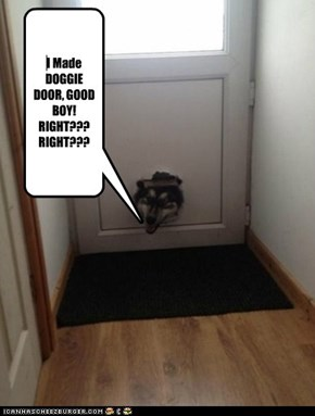 I Made DOGGIE DOOR, GOOD BOY! RIGHT??? RIGHT???