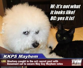 KKPS Mayhem - Woofany caught in the act: secret pact with Basement cat to secure May Day Mayhem votes