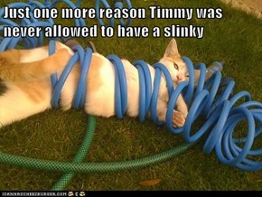 Just one more reason Timmy was never allowed to have a slinky