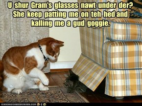 U  shur  Gram's  glasses  nawt  under  der?