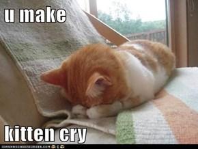 u make  kitten cry