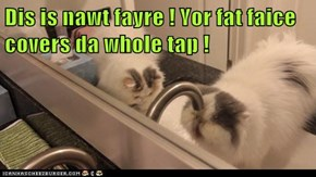 Dis is nawt fayre ! Yor fat faice covers da whole tap !