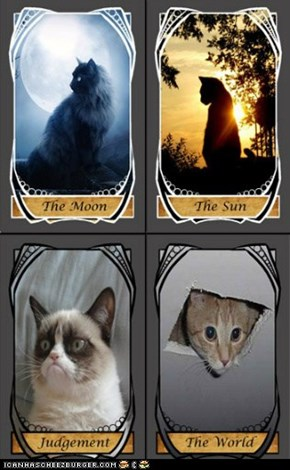 SAMPLE PREVIEW Lolcat Tarot Cards - Comments and Suggestions Welcome!