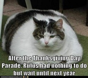 After the Thanksgiving Day Parade, Rufus had nothing to do but wait until next year