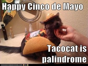 Happy Cinco de Mayo  Tacocat is palindrome