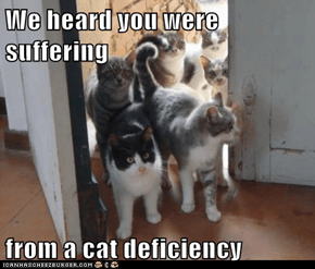 We heard you were suffering  from a cat deficiency