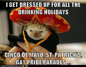 I GET DRESSED UP FOR ALL THE DRINKING HOLIDAYS  CINCO DE MAYO, ST. PATRICK'S, GAY PRIDE PARADES ...