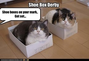 Shoe Box Derby