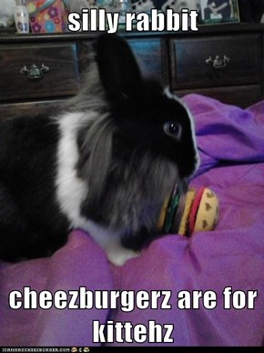 silly rabbit  cheezburgerz are for kittehz