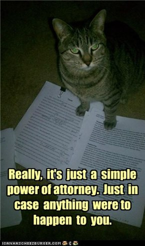 Really,  it's  just  a  simple power of attorney.