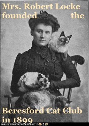 Mrs. Robert Locke founded                the   Beresford Cat Club in 1899