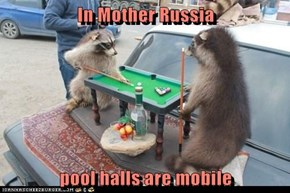 In Mother Russia  pool halls are mobile