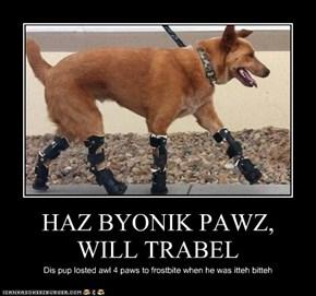 HAZ BYONIK PAWZ,  WILL TRABEL