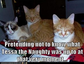 Pretending not to know what Tessa the Naughty was up to at that very moment...