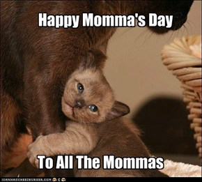 Happy Momma's Day