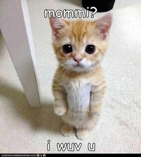 mommi?  i wuv u