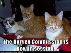 The Harvey Commission is now in session.