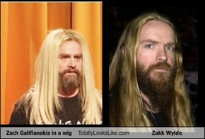 Zach Galifianakis in a wig Totally Looks Like Zakk Wylde