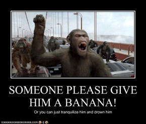 SOMEONE PLEASE GIVE HIM A BANANA!
