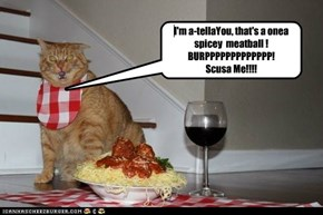 I'm a-tellaYou, that's a onea spicey  meatball ! BURPPPPPPPPPPPPP! Scusa Me!!!!