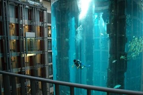 Taking a Dive in the Radisson Blu Hotel, Berlin