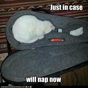 Pardon mai pun, but needz a nap