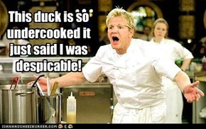 This duck is so undercooked it just said I was despicable!