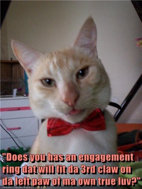 """Does you has an engagement ring"