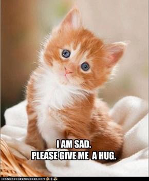 I AM SAD. PLEASE GIVE ME  A HUG.