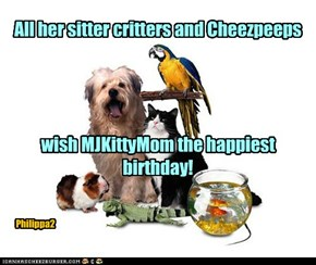 Happy Birthday to MJKittyMom!