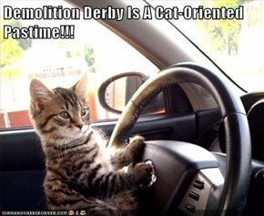 Demolition Derby Is A Cat-Oriented Pastime!!!